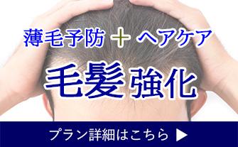 毛髪強化で育毛